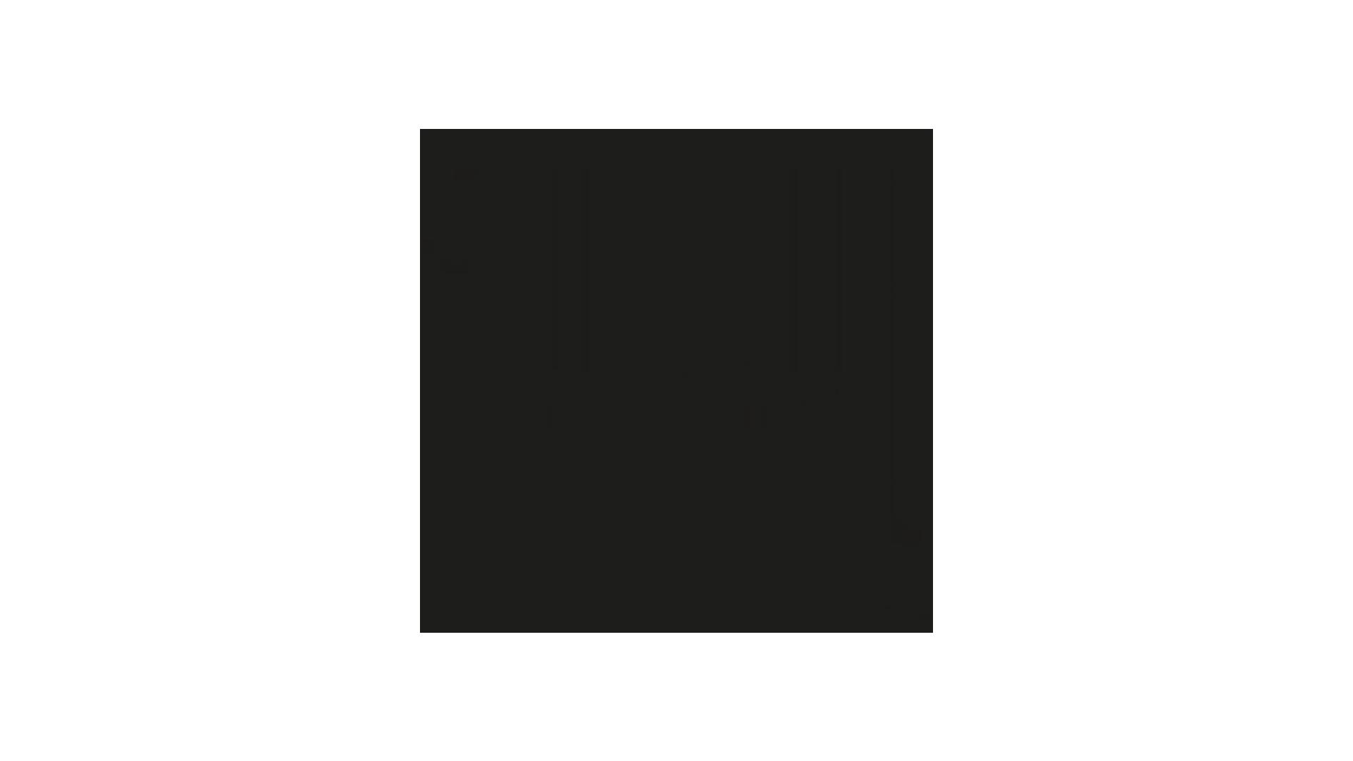 tunes&wings